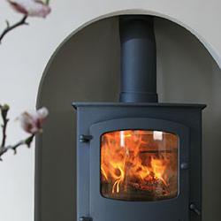 Photo of installed multi-fuel burning stove